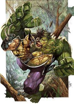 Wolverine vs. Hulk by Romulo Fajardo Jr. & Steven Segovia