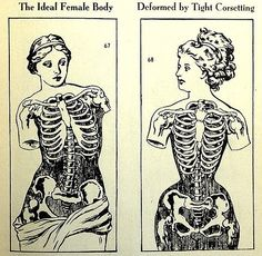 #corset #corsetry #illustration #female #skeleton #anatomy #diagram #quote #quotation #text #ImagesWithText #FemaleBody #TightLacing