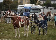 One of the traditional events to take place at the fair include horse and buggy racing. Th...
