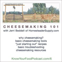Know Your Food with Wardee Podcast #6: Cheesemaking 101 with Jerri Beddell from HomesteaderSupply.com
