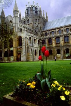 Ely Cathedral, England stately presence