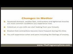 8 Months Pregnant - Week by Week Pregnancy