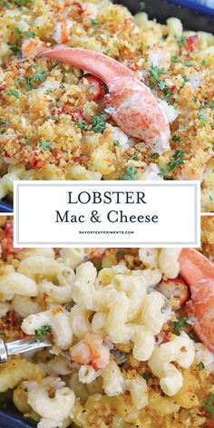 Sweet lobster, creamy cheese & a crunchy panko topping come together to make the BEST Lobster Mac and Cheese recipe! Perfect for any elegant or casual meal! #lobstermacandcheese #easylobstermacandcheese #homemademacandcheese www.savoryexperiments.com Lobster Mac N Cheese Recipe, Seafood Mac And Cheese, Best Mac N Cheese Recipe, Best Mac And Cheese, Mac Cheese Recipes, Mac And Cheese Homemade, Lobster Recipes, Macaroni Cheese, Seafood Dishes