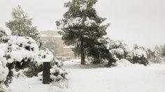 La ermita toda nevada #winter #nieve #snow #invierno #hotel #hotelviews #travel #viaje #viatge #vouyage #reise #travelling #instatravel  #Spain #España #Aragón #Teruel #Matarranya #nature #rural #boutiqueHotel #petfriendly #kidsfriendly #gayfriendly #luxury #exclusive