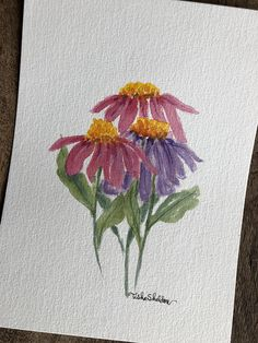 An Original Watercolor, Cone-Flowers