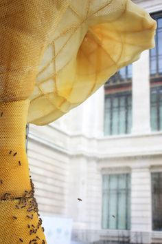 The Unbearable Lightness of BEEing: Tomáš Libertíny Talks To Yatzer About His Extraordinary Collaboration With Honey Bees | Yatzer