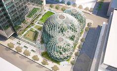 La biosfera di Amazon a Seattle - Amazon ha intenzione di realizzare tre gigantesche biosfere contenenti microclimi e piante da tutto il mondo per la sua nuova sede a Seattle.  L'obiettivo è quello di creare un ambiente in cui i dipendenti possano lavorare e socializzare in un ambiente simile ad un parco naturale.