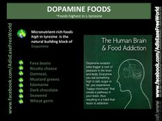 Providing genuine information on alternative and complimentary ways to health. Ancient, Natural and Forgotten. Dopamine Receptor, L Tyrosine, Oil Pulling, Brain Activities, Neurotransmitters, How To Stay Healthy, Healthy Tips, Medicinal Herbs, Natural Medicine