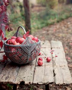 apples - (@allthebeautifulthingsblog) su Instagram