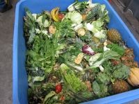 Oct 8 - Governor Signs Organic Waste Recycling Legislation — Californians Against Waste Jerry Brown, Environmental Law, Food Waste, Guacamole, Recycling, Organic, California, Signs, Vegetables