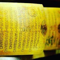 Esce la guida alle aziende che producono Parmigiano Reggiano. Scoprite tutto su www.gamberorosso.it #food #parmigiano #parmigianoreggiano #formaggi #cheese #foodie #slowfood