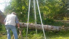 Groot karwei boomstammen opruimen