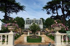 Silver Medal Winning Garden, A Growing Obsession by Yardley London Ltd, designed by Jean Wardrop and Alexandra Stevenson, for the RHS Hampton Court Palace Flower Show.