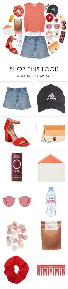 """""""27 degrees"""" by c-einwen ❤ liked on Polyvore featuring American Vintage, adidas, Sam Edelman, Halston Heritage, Connor, Disney, Ray-Ban, Evian, Paul Frank and Forever 21"""