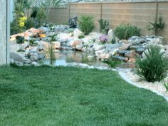 low cost landscaping for small back yards - Google Search