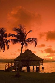 Beautiful sunset in paradise! #photography