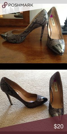 Steve Madden snake print grey pumps 8.5 EEUC worn 1x to a wedding. Mirrored toe. Super couture. Size 8.5 Steve Madden Shoes Heels