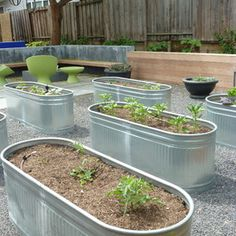 Container gardening is perfect for the Las Vegas desert since you'll need to bring in all your soil initially.