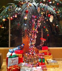 112 best christmas palmtree images on pinterest in 2018 beach