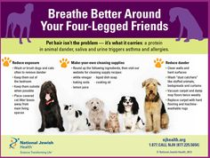 Pets and Asthma- Breathe Better Around Your Four-Legged Friends