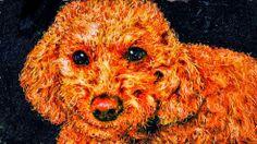 PCペイントで絵を描きました! Art picture by Seizi.N:   PCでペット達をお絵描き、Windows8.1専用ペイントアプリケーション使用して制作しました。:  僕の描いた絵をウインドーズのムービーメーカーアプリケーション制作しましたので見てください。 http://youtu.be/DBuIR1ztDyE