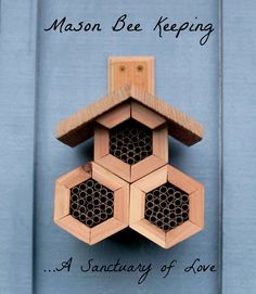 Is your garden complete with a Mason Bee house yet? Why you need a Mason Bee house next to your garden...