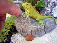 Miniature Iguana on Rock 4450 Fairy Garden Dollhouse | eBay