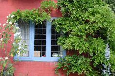 Wyken Vineyards - Flip - Picasa Webalbums