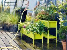 Jardinière en longueur sur pied verte fermob. http://www.m-habitat.fr/terrasse/amenagement-et-mobilier-de-terrasse/les-jardinieres-pour-fleurir-terrasses-et-rebords-de-fenetres-2828_A