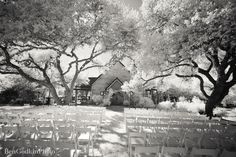 Red Corral Ranch - Caroline + Ben Photography