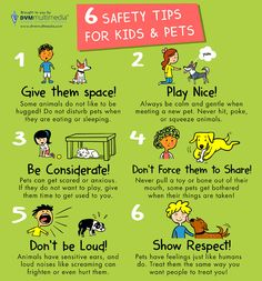 Take a look at these safety tips for kids & pets!