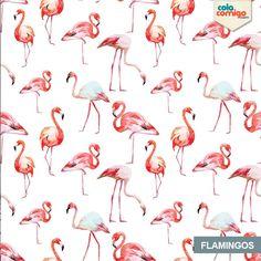 Papel de Parede Tropical Flamingos
