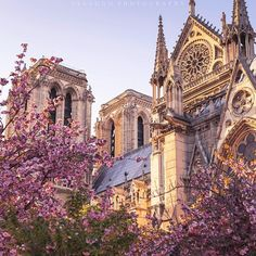 """""""#Spring in #Paris @france.vacations #france_vacations"""""""