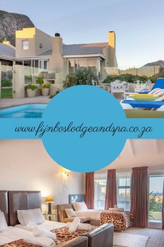 Fijnbos Lodge and Spa, nestled in the sleepy seaside village of Betty's Bay, (about 75 minutes east of Cape Town), is a stylish accommodation option, well-suited to all travellers. Seaside Village, Spa Offers, Cape Town, Great Places, South Africa, Coast, Stylish, Outdoor Decor, Travel