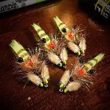 Image result for 239 flies