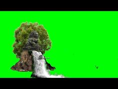 Green screen background video effects hd Paint Splash Background, Green Background Video, Green Screen Video Backgrounds, Green Backgrounds, Green Screen Images, Green Screen Video Effect, Nature Background Images, Iphone Background Images, 2d Character Animation