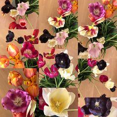 #silkscarvesmadeinHH PRIVATSACHEN#handdyedsilk #FROMWHICHWERISE#WELOVEOURCUSTOMERS#LAYERING#SECRETSOFGREEN#faitmain#allages#artisanal#handcrafted#perfectclothing #bohemiansilks#bohemianstyle #indigodyeing #sustainable #slowfashion2017 #scarvesstore #scarfseason #scarves #highendfashion #artisanalfashion #indigodye #shiboristyle #artisanalfashion #slowsewing #oneofakind#momakawakubo#momanyrei##culureclothing #seide#plissee #handcraft #handgefärbt #handplissee