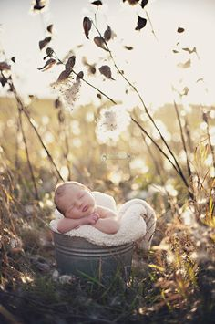 Love this I want take pictures of my next baby outside like this.. (inspiration)