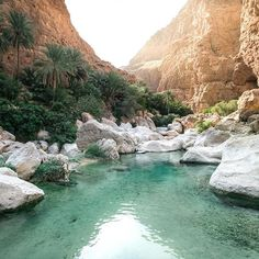 Follow the talented @jyetylr for more of his adventure photos. This place was absolutely surreal, a complete oasis all to ourselves. Never in my life have a seen water as clear & for it to be in the heart of the middle eastern desert. Some people could say it looks like a mirage. #earthfocus #FF #beautiful #followback #mothernature #earthporn