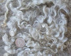 Natural rizado KID MOHAIR cerraduras para todos los artes fibra lana: Spinning, fieltro, tejido, pelo de muñeca, volver a arraigo, pelucas, 1 oz blanco