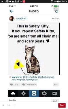 ....like why does pinning this not give me more cat pins.....