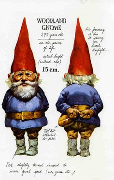 I love gnomes. I have a huge collection of figurines. And even as an adult, I still imagine I can see their little red hats peeking out from behind trees and rocks.