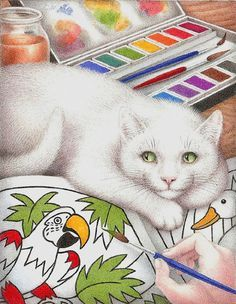 nicola bailey cats - Google Search
