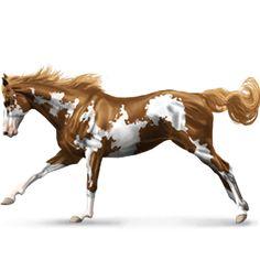 A Ƭнσυѕαη∂ Mιℓєѕ, Pegasus Mustang Palomino #49 - Howrse