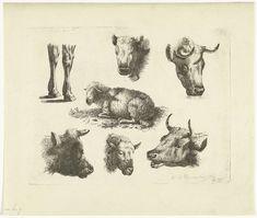Studieblad met koppen en poten van koeien en schapen, Henricus Wilhelmus Couwenberg, 1830 - 1845