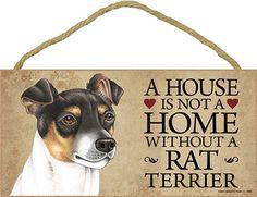 No it's not .. love my rat terrier