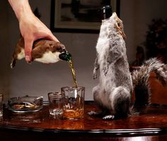 Craft brewer BrewDog once created a 55% Belgian ale and encased the bottles in dead squirrels.