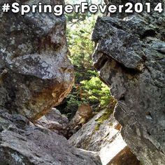 #SpringerFever2014 #AppalachianTrail #Trail #AT #BackpackingAT #Backpacking #Hiking #Hike #Latergram #Rocks #Boulder