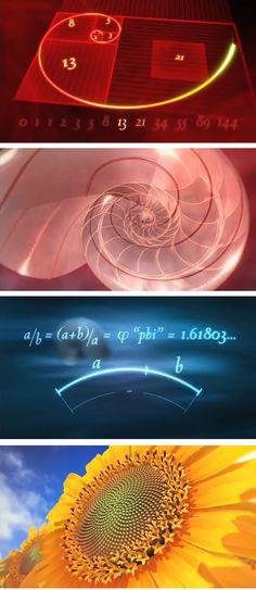 The golden ratio, spirals in mathematica...