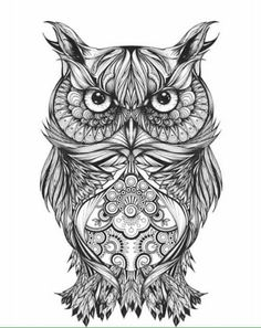 Gregor The Owl By Greg Coulton Nadine